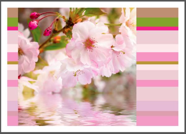 "Postkarte ""Kirschblüte - Farbenspiel"" | Grußkarte, Blumen"